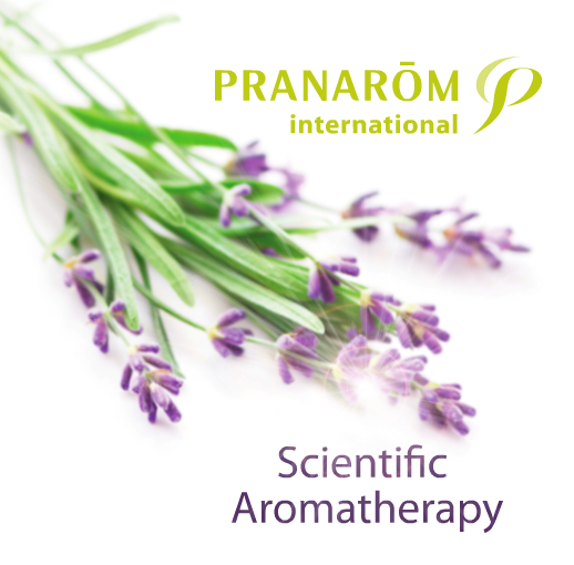 pranarom eterina ulja, aromaforce, shea maslac, bio kozmetika