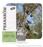 eukaliptus polibraktea kripton pranarom
