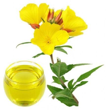 ulje noćurka cijena - gdje kupiti noćurak u kapsulama, gdje kupiti ulje noćurka - recepti s uljem noćurka za atopijski dermatitis, pms, akne, evening primrose oil gdje kupiti, ulje noćurka reepti