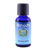 eukaliptus radiata eterično ulje oshadhi